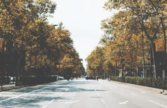 Street City Road Marking Wallpaper 2160x3840 340x220