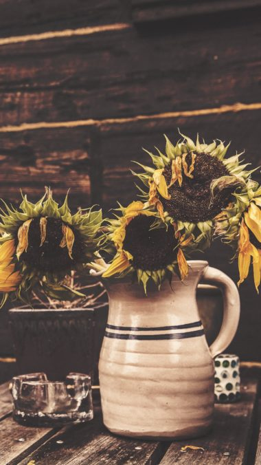 Sunflowers Vase Flowers Wallpaper 2160x3840 380x676