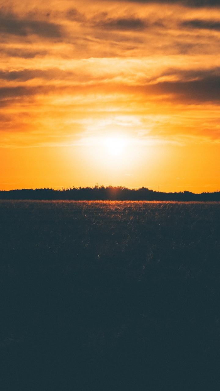 Sunset Field Grass Sky Wallpaper 720x1280