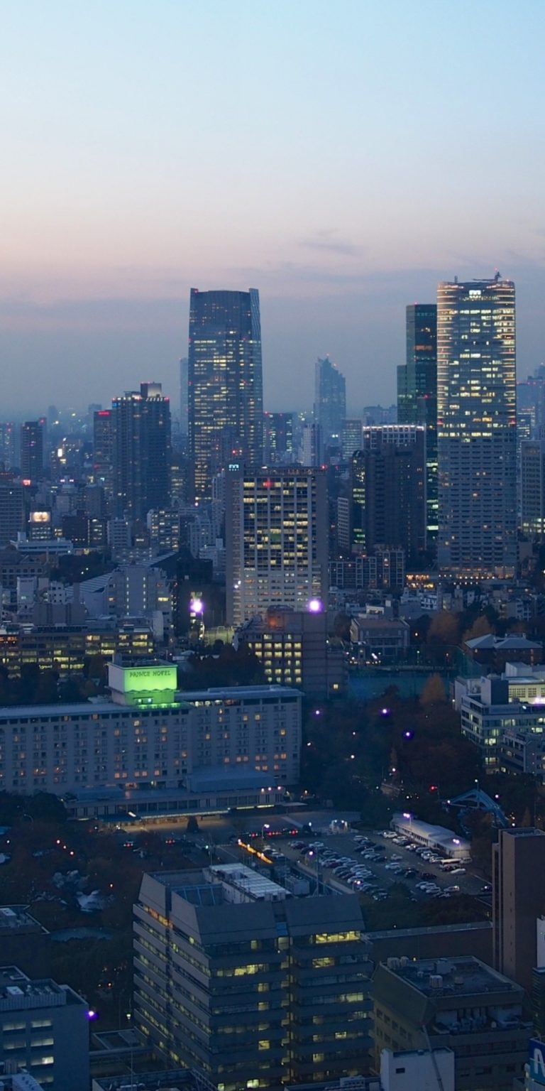 Tokyo Ultra HD Wallpaper 1080x2160 768x1536