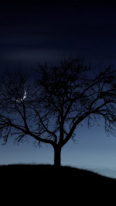 Tree Night Lonely Silhouette Stars Moon Fog 380x676