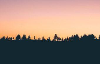 Trees Sunset Horizon Wallpaper 720x1280 340x220