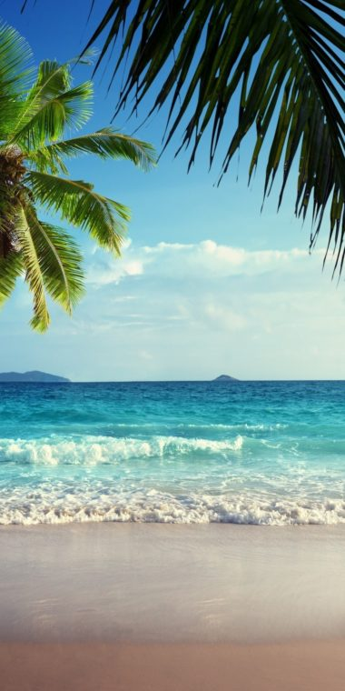 Tropical Ultra HD Wallpaper 1080x2160 380x760