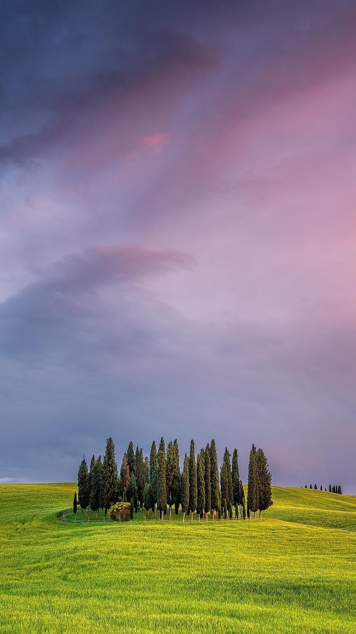 Tuscany Field In Italy Wallpaper 720x1280