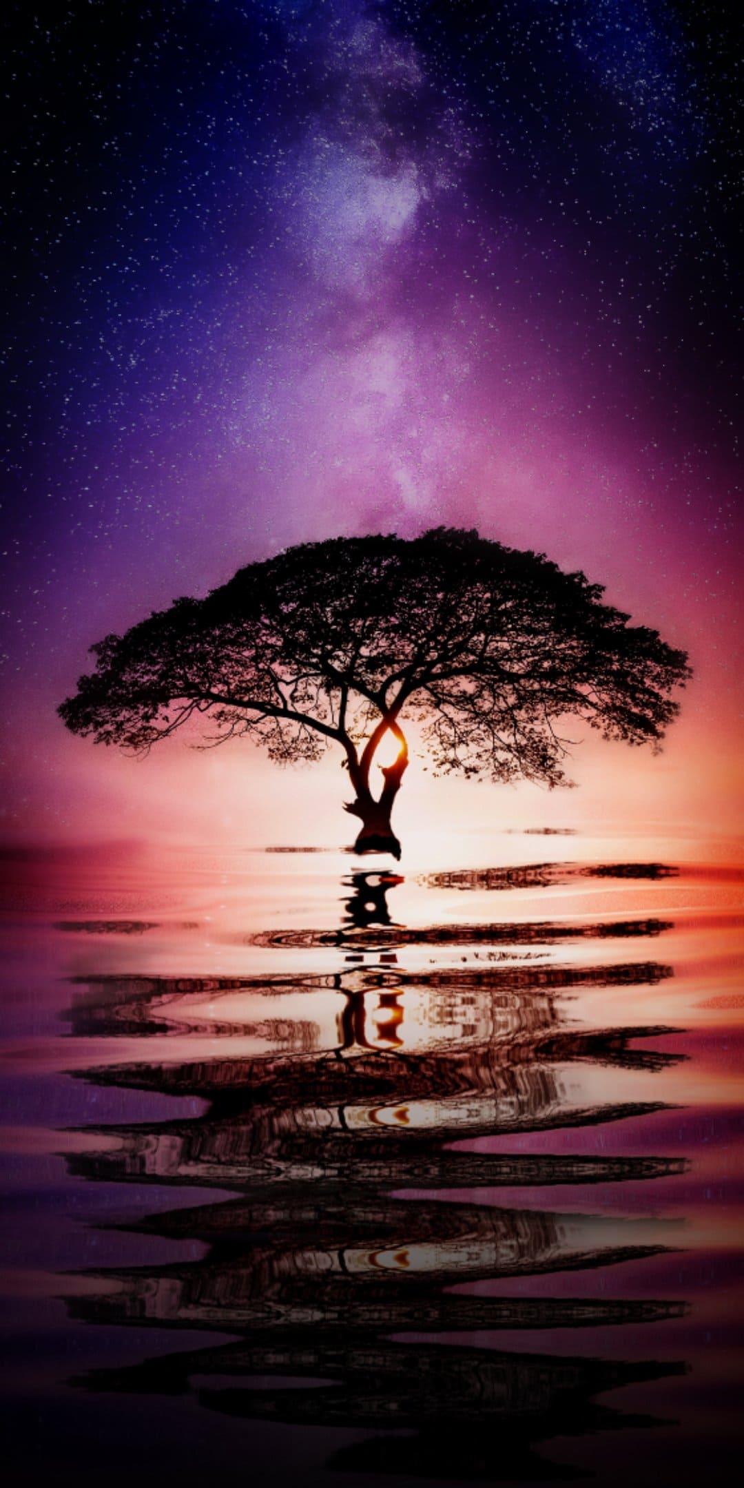 Water Tree Wallpaper