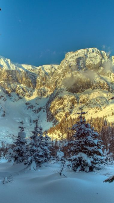 Winter Mountains Austria 380x676