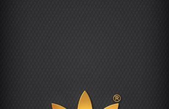 Adidas Wallpaper 12 640x1136 340x220