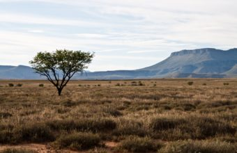 African Landscape Wallpaper 03 3888x2592 340x220