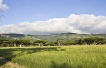African Landscape Wallpaper 04 1920x1080 340x220