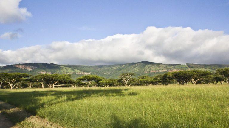 African Landscape Wallpaper 04 1920x1080 768x432