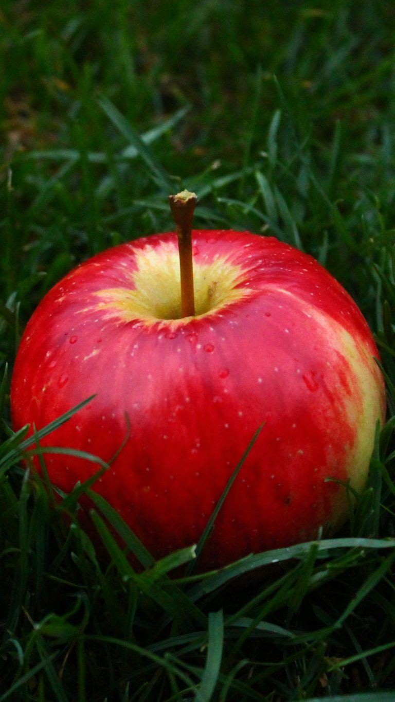 Apple Fruit Grass Wallpaper 1440x2560 768x1365