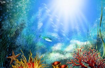 Aquarium Wallpaper 14 1920x1200 340x220