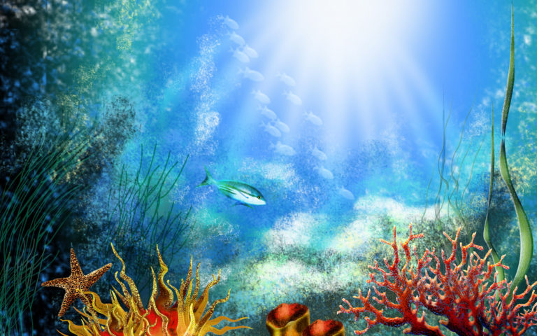 Aquarium Wallpaper 14 1920x1200 768x480