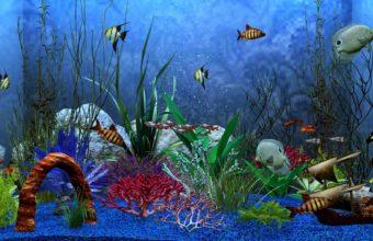 Aquarium Wallpaper 15 1920x1080 340x220