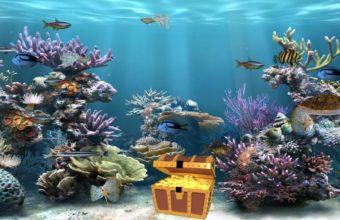 Aquarium Wallpaper 27 1212x675 340x220