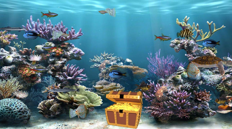 Unduh 1000+ Wallpaper Bergerak Aquarium  Gratis