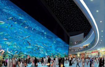 Aquarium Wallpaper 32 1280x903 340x220