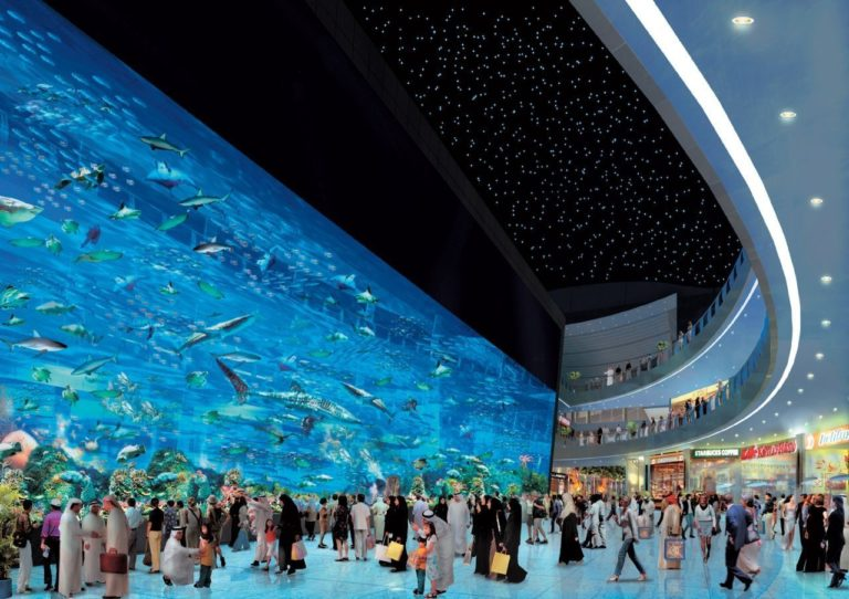 Aquarium Wallpaper 32 1280x903 768x542