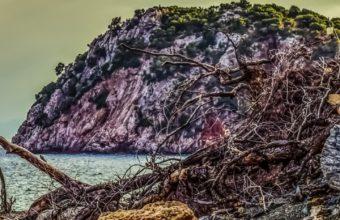 Beach Pebble Rock Hdr Wallpaper 1440x2560 340x220