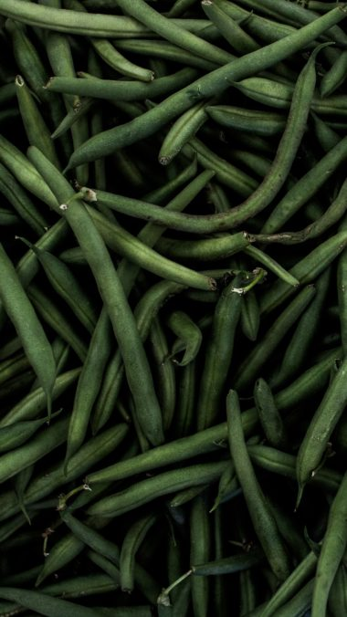 Beans Pods Green Wallpaper 1440x2560 380x676
