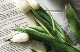 Book Tulips Coffee Wallpaper 1440x2560 340x220