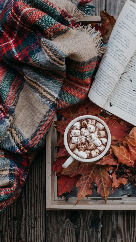 Cocoa Marshmallow Autumn Plaid Book Wallpaper 1440x2560 768x1365