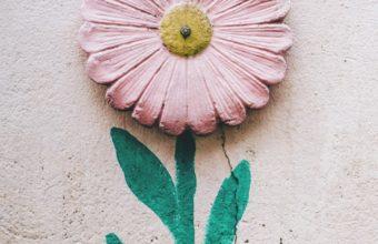Flower Wall Art Wallpaper 1440x2560 340x220
