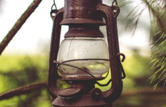Lantern Lamp Branches Wallpaper 1440x2560 340x220
