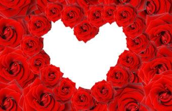 Love Heart Wallpaper 27 2560x1600 340x220