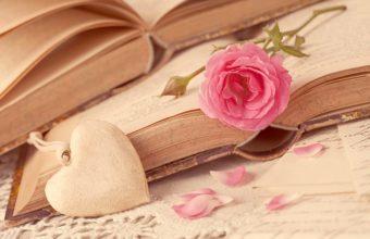 Love Heart Wallpaper 32 4000x2667 340x220