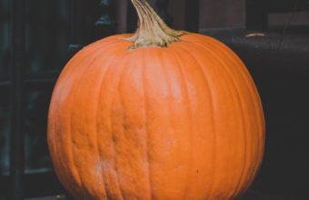 Pumpkin Autumn Harvest Wallpaper 1440x2560 340x220