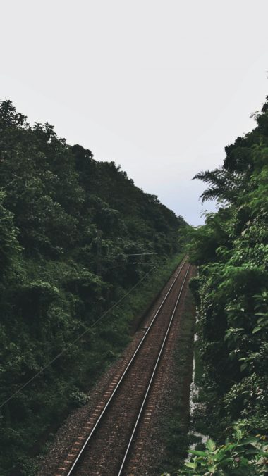 Railway Trees Road Wallpaper 1440x2560 380x676