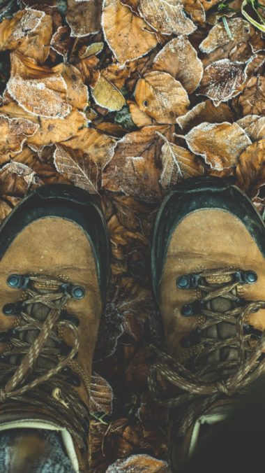 Shoes Autumn Legs Foliage Wallpaper 1440x2560 380x676