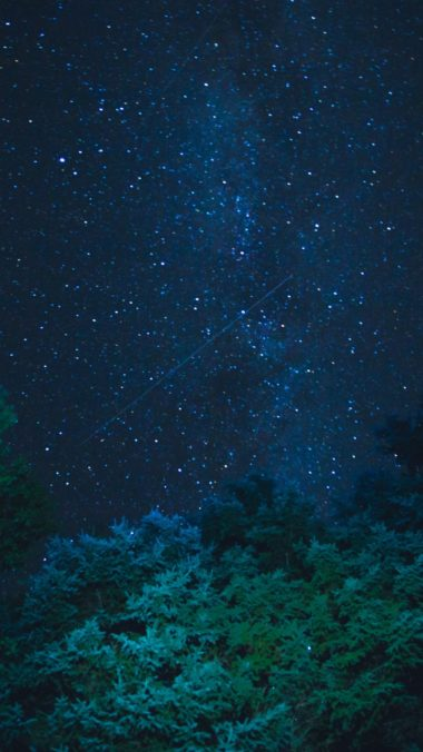 Starry Sky Stars Night Trees Wallpaper 1440x2560 380x676