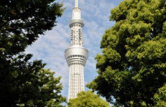 Tokyo Wallpaper 43 1920x1080 340x220