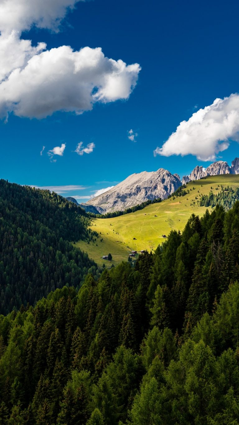 Trees Mountains Clouds Summer Wallpaper 1440x2560 768x1365