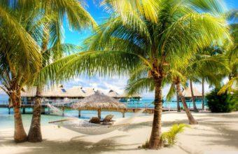 Beach Resort Wallpaper 01 2560x1600 340x220