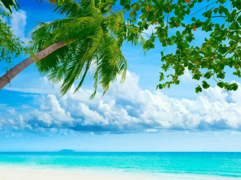 Beach Resort Wallpaper 04 1280x960 768x576