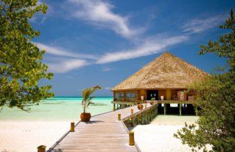 Beach Resort Wallpaper 18 2560x1600 340x220