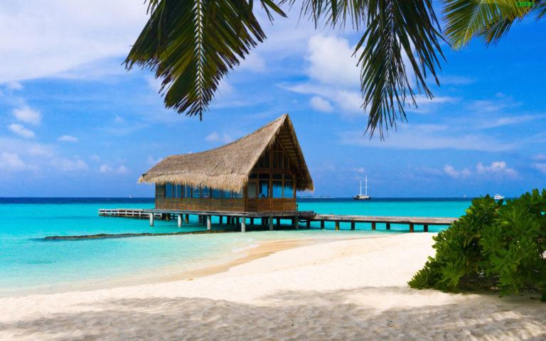 Beach Resort Wallpaper 28 1440x900 768x480