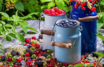 Berries Golubmka Raspberries Wallpaper 1600x1280 340x220