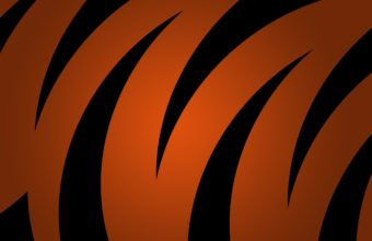 Black And Orange Wallpaper 02 2560x1600 340x220