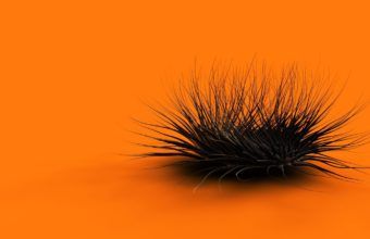 Black And Orange Wallpaper 16 1440x900 340x220