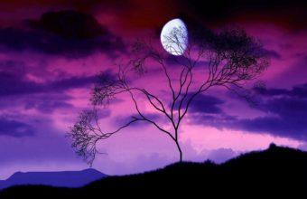 Black Moon Wallpaper 12 1600x1280 340x220