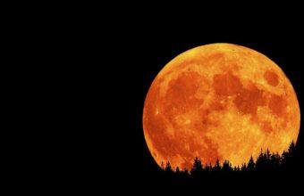 Black Moon Wallpaper 24 1024x768 340x220