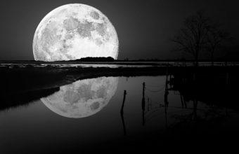 Black Moon Wallpaper 27 2880x1800 340x220