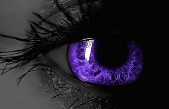 Black Purple Wallpaper 13 1680x1050 340x220