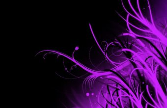 Black Purple Wallpaper 27 1280x800 340x220