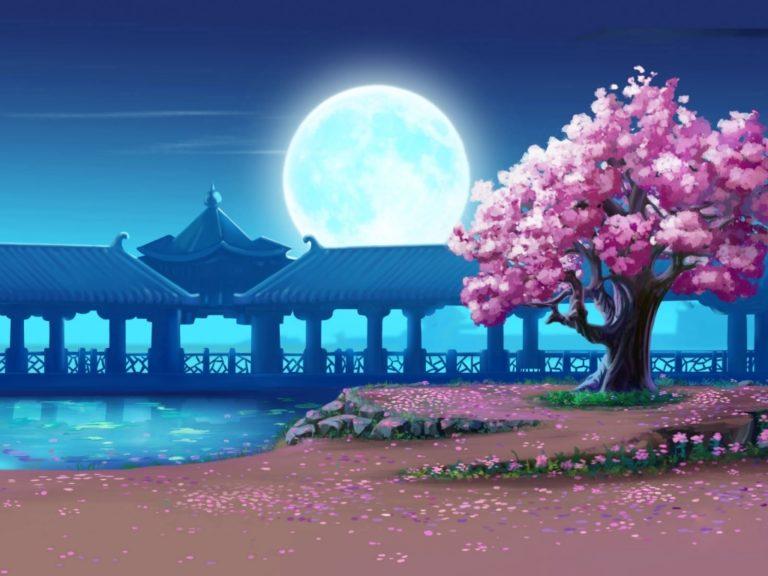 Cherry Blossom Tree Wallpaper 25 1024x768 768x576