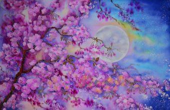 Cherry Blossom Tree Wallpaper 41 1920x1241 340x220